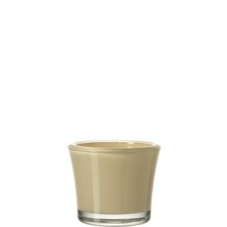 glaskoch Tischlicht 8,5 Creme Bloom