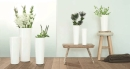ASA Mono Vase, weiß D. 17 cm, H. 45 cm 1036005