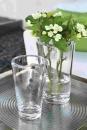 Fink CORSIVO Vase  Höhe 30cm, Ø 17cm 111569