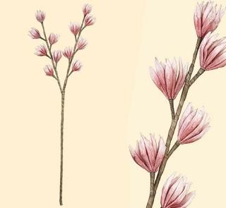 Gilde Dendrobium-Orchidee pink 2 Stiele, Kunstblume, Pflanze, Deko