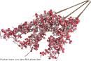 ASA  Zweig Beeren gefrostet L.65cm Xmas13