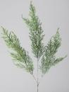 Formano Zweig 75cm      Zypresse geeis 665836