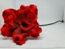 Formano Blume 80cm      bordeaux