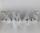 Formano Schriftzug H: 10cm L: 33cm (Verstellbar) X`MAS sort.    796394