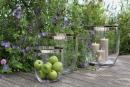 Fink Deluxe  Vase  Windlicht  Glas  Platinumauflage  silberfarben  transparent  Höhe 33 cm  Durchmesser 31 cm 112071