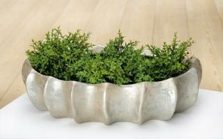 Gilde Keramik Ovale Schale Brillante 32183