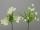 Formano Frühlingsstrauß weiss-grün sor 671714
