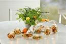 Gilde Dream Ufo Medium Fresh Fruit 71821