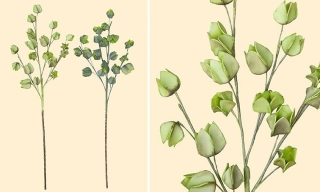 Gilde Deko Physalis-Zweig  hellgrün + dunkelgrün  cm  cm H= 90cm  cm