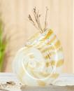 Gilde GlasArt Vase Schneckenmuschel sandfarben, mundgeblasen & durchgefärbt  Länge 8,0 cm Breite 15,5 cm Höhe 15,0 cm 39434