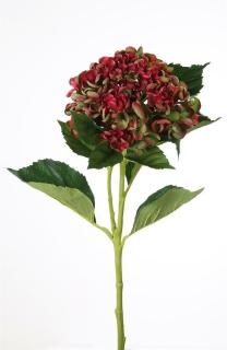 Gilde Hortensie/2  aus Kunststoff · rot-grün  Höhe 72 cm   54073