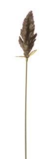 Gilde Beerenzweig aus Kunststoff · grün-violett Höhe 66 cm Höhe 66,0 cm 56369