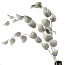 Casablanca Foam Flower Leaves grau/weiss gew. L.110cm...