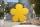 8Seasons Shining Flower Ø 40 cm (gelb) 32407