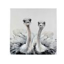 Werner Voß Bild Lovely Ostriches Acryl auf Leinwand...